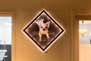 星川・和田町・上星川の犬のホテル