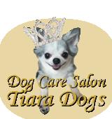Dog Care Salon Tiara Dogs-ドッグケアサロンティアラドッグス