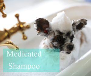 犬の薬用シャンプー